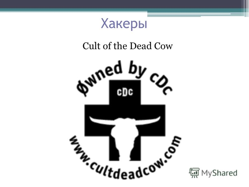 Хакеры Cult of the Dead Cow