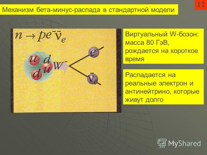 Механизм бета-минус-распада в стандартной модели 12 Виртуальный W-бозон: масса 80 ГэВ, рождается на короткое время Распадается на реальные электрон и антинейтрино, которые живут долго