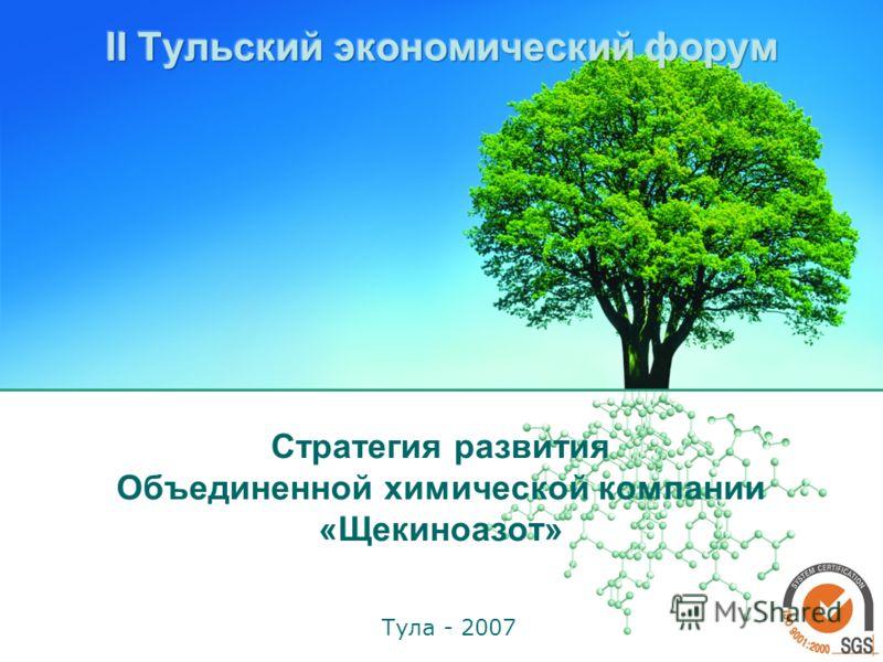 Стратегия развития Объединенной химической компании «Щекиноазот» Тула - 2007