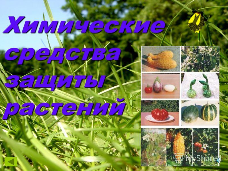 Химические средства защиты растений