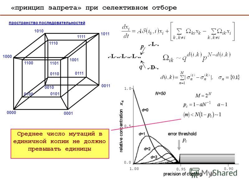 0000 0001 0010 0100 1000 0011 0101 1001 0110 1010 0111 1011 1101 1110 1100 1111 пространство последовательностей «принцип запрета» при селективном отборе Среднее число мутаций в единичной копии не должно превышать единицы