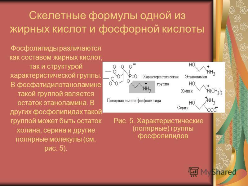 Скелетные формулы одной из жирных кислот и фосфорной кислоты Фосфолипиды различаются как составом жирных кислот, так и структурой характеристической группы. В фосфатидилэтаноламине такой группой является остаток этаноламина. В других фосфолипидах так