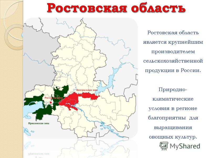 Ростовская область является крупнейшим производителем сельскохозяйственной продукции в России. Природно- климатические условия в регионе благоприятны для выращивания овощных культур.