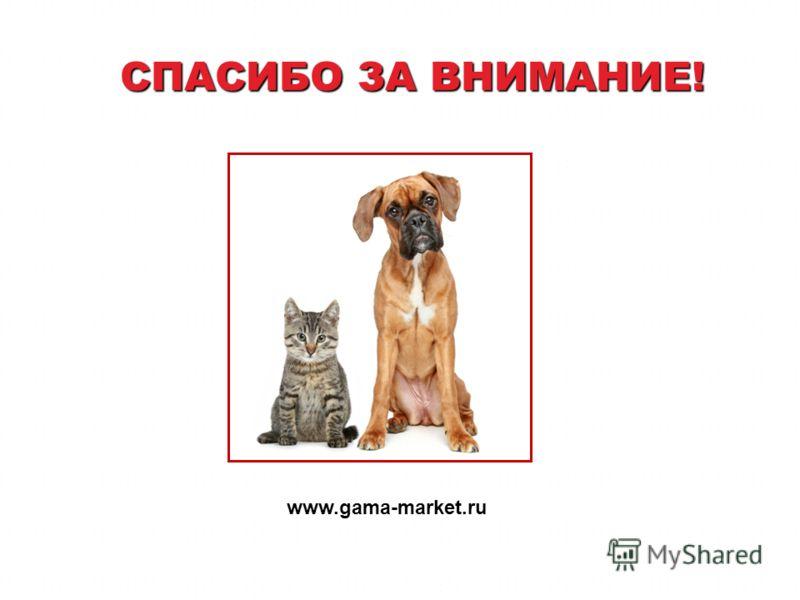 СПАСИБО ЗА ВНИМАНИЕ! www.gama-market.ru