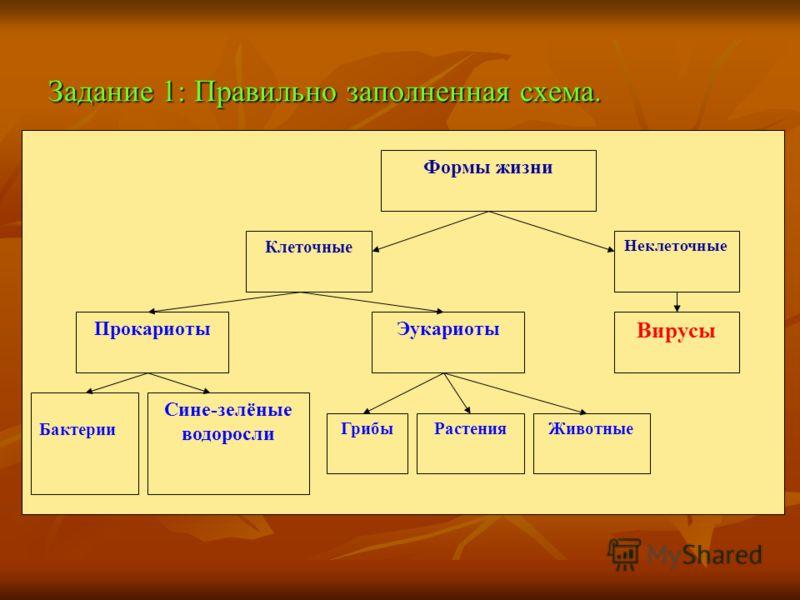 Задание 1: Правильно заполненная схема. Формы жизни Клеточные Неклеточные ПрокариотыЭукариоты Бактерии Сине-зелёные водоросли ГрибыРастенияЖивотные Вирусы
