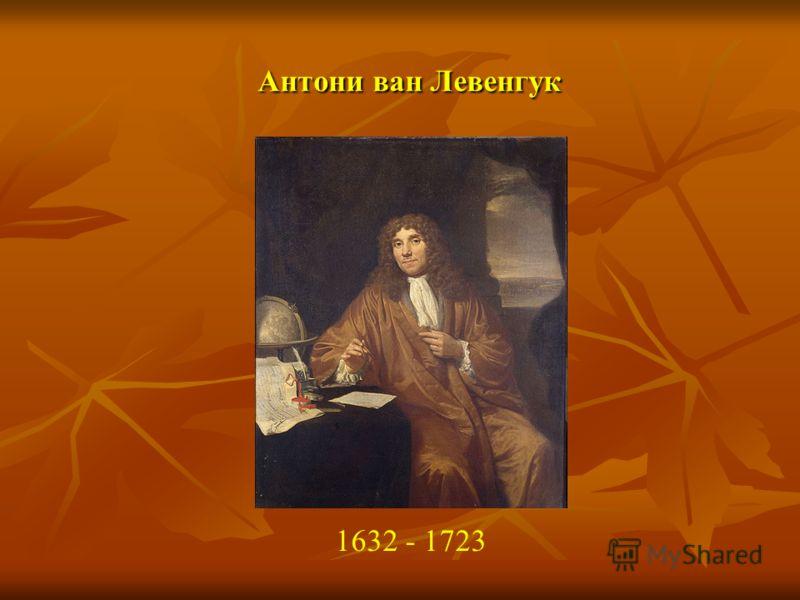 Антони ван Левенгук 1632 - 1723