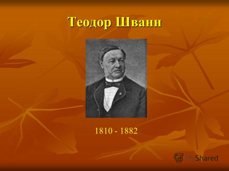 Теодор Шванн 1810 - 1882
