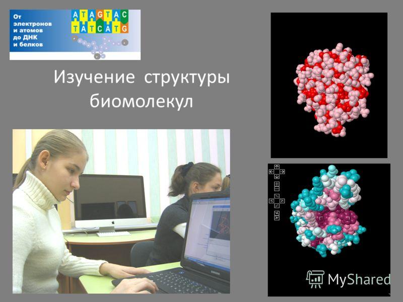 Изучение структуры биомолекул