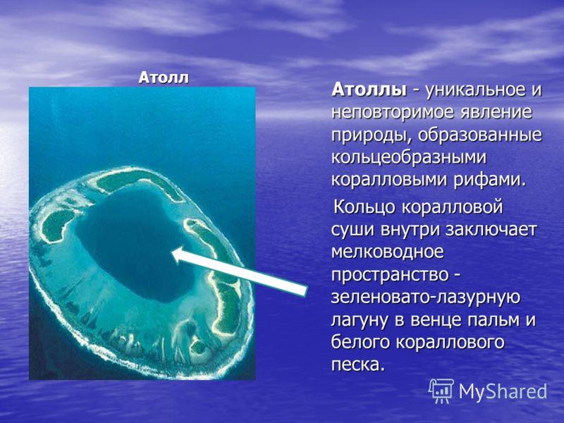 Атолл Атоллы - уникальное и неповторимое явление природы, образованные кольцеобразными коралловыми рифами. Атоллы - уникальное и неповторимое явление природы, образованные кольцеобразными коралловыми рифами. Кольцо коралловой суши внутри заключает ме