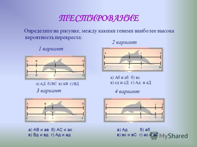 Основные положения закона сцепленного наследования Т.Моргана Гены, расположенные в одной хромосоме, образуют группу сцепления и наследуются совместно. Сцепление бывает полным и неполным. При неполном сцеплении гомологичные хромосомы обмениваются свои