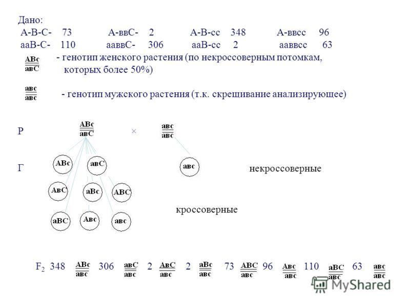 Решение генетических задач На составление карты хромосом Задача: В результате анализирующего скрещивания у томатов получилось следующее расщепление: А-В-С- 73 А-ввС- 2 А-В-сс 348 А-ввсс 96 ааВ-С- 110 ааввС- 306 ааВ-сс 2 ааввсс 63 1. Написать схему ан