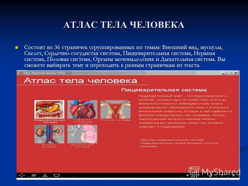 АТЛАС ТЕЛА ЧЕЛОВЕКА Состоит из 36 страничек сгруппированных по темам: Внешний вид, мускулы, Скелет, Сердечно-сосудистая система, Пищеварительная система, Нервная система, Половая система, Органы мочевыделения и Дыхательная система. Вы сможете выбират
