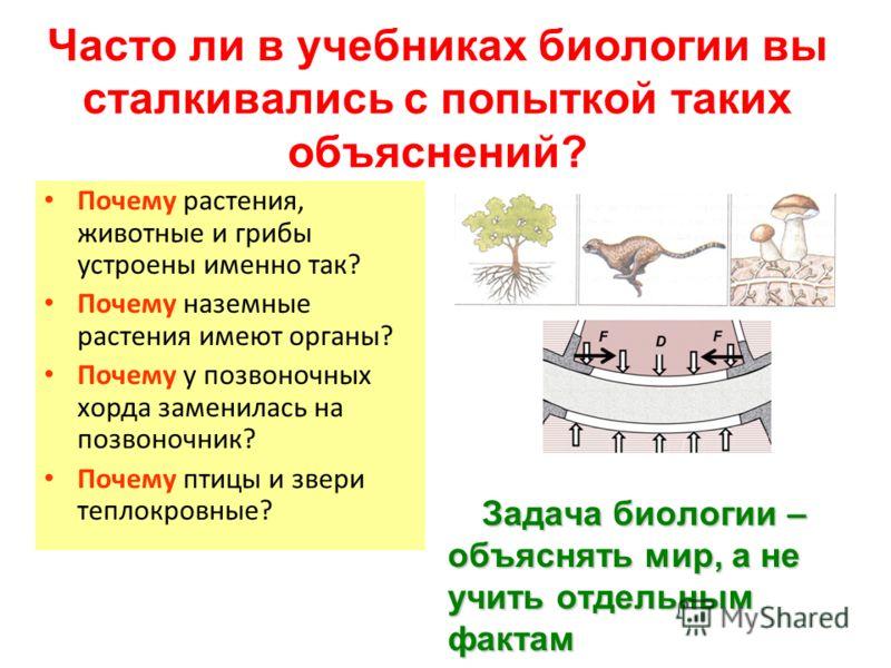 Часто ли в учебниках биологии вы сталкивались с попыткой таких объяснений? Задача биологии – объяснять мир, а не учить отдельным фактам Почему растения, животные и грибы устроены именно так? Почему наземные растения имеют органы? Почему у позвоночных