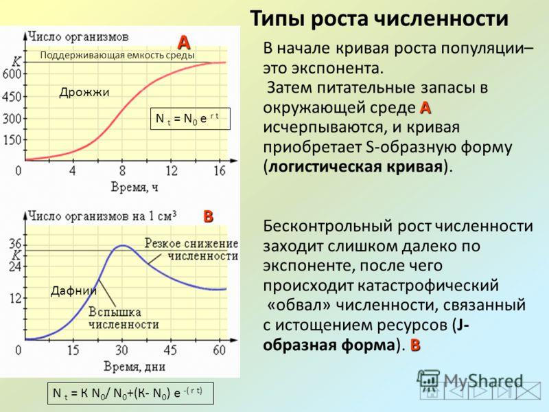 В начале кривая роста популяции– это экспонента. А Затем питательные запасы в окружающей среде А исчерпываются, и кривая приобретает S-образную форму (логистическая кривая). Бесконтрольный рост численности заходит слишком далеко по экспоненте, после