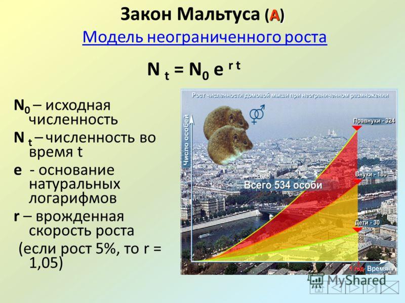 А) Закон Мальтуса (А) Модель неограниченного ростаМодель неограниченного роста N 0 – исходная численность N t – численность во время t е - основание натуральных логарифмов r – врожденная скорость роста (если рост 5%, то r = 1,05) N t = N 0 e r t
