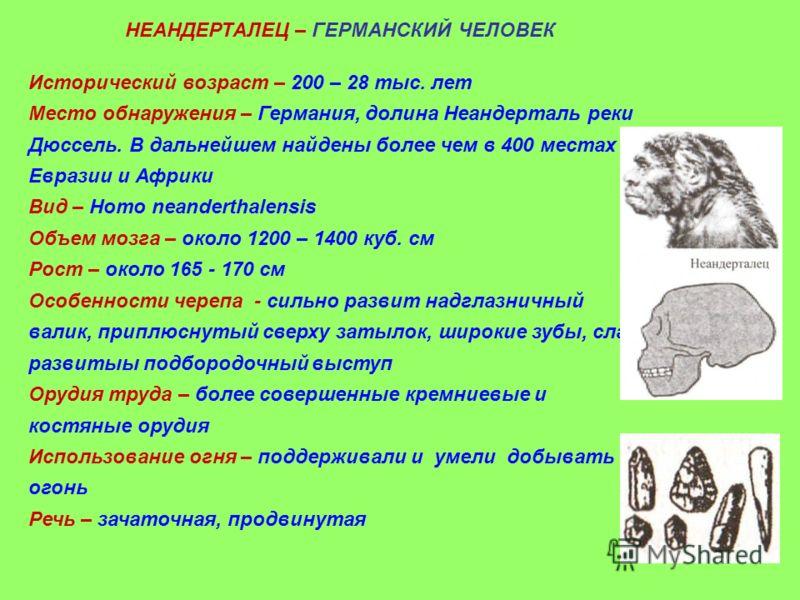 НЕАНДЕРТАЛЕЦ – ГЕРМАНСКИЙ ЧЕЛОВЕК Исторический возраст – 200 – 28 тыс. лет Место обнаружения – Германия, долина Неандерталь реки Дюссель. В дальнейшем найдены более чем в 400 местах Евразии и Африки Вид – Homo neanderthalensis Объем мозга – около 120