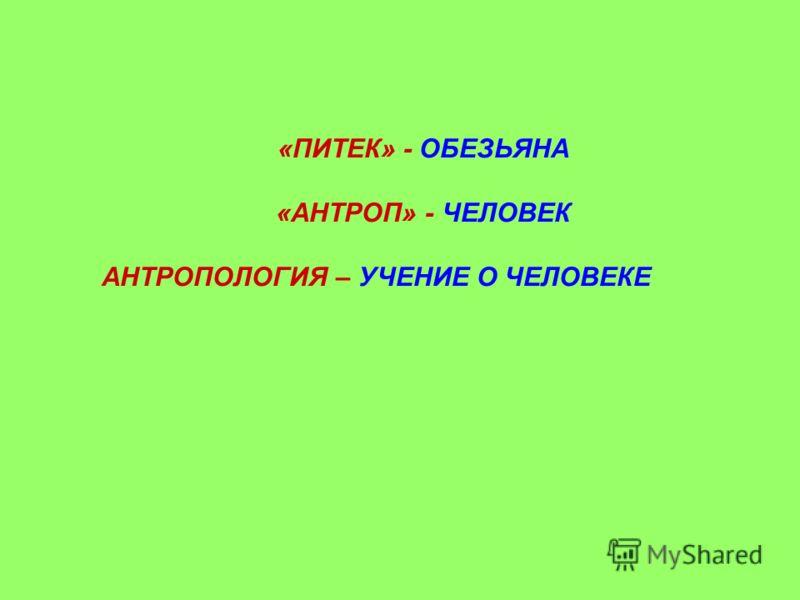 «ПИТЕК» - ОБЕЗЬЯНА «АНТРОП» - ЧЕЛОВЕК АНТРОПОЛОГИЯ – УЧЕНИЕ О ЧЕЛОВЕКЕ