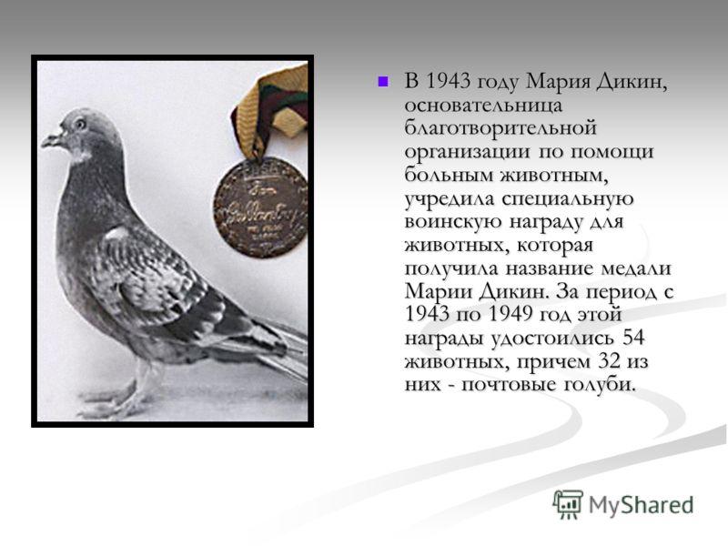 В 1943 году Мария Дикин, основательница благотворительной организации по помощи больным животным, учредила специальную воинскую награду для животных, которая получила название медали Марии Дикин. За период с 1943 по 1949 год этой награды удостоились