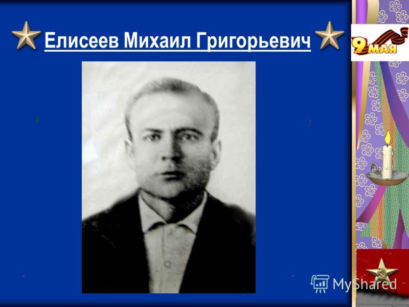 Елисеев Михаил Григорьевич