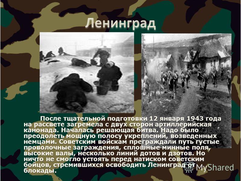 После тщательной подготовки 12 января 1943 года на рассвете загремела с двух сторон артиллерийская канонада. Началась решающая битва. Надо было преодолеть мощную полосу укреплений, возведенных немцами. Советским войскам преграждали путь густые провол