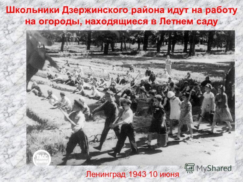 Учащиеся 3-го класса женской школы 216 Куйбышевского района готовят кисеты в подарок фронтовикам. На первом плане Г.Семенова Ленинград 1943