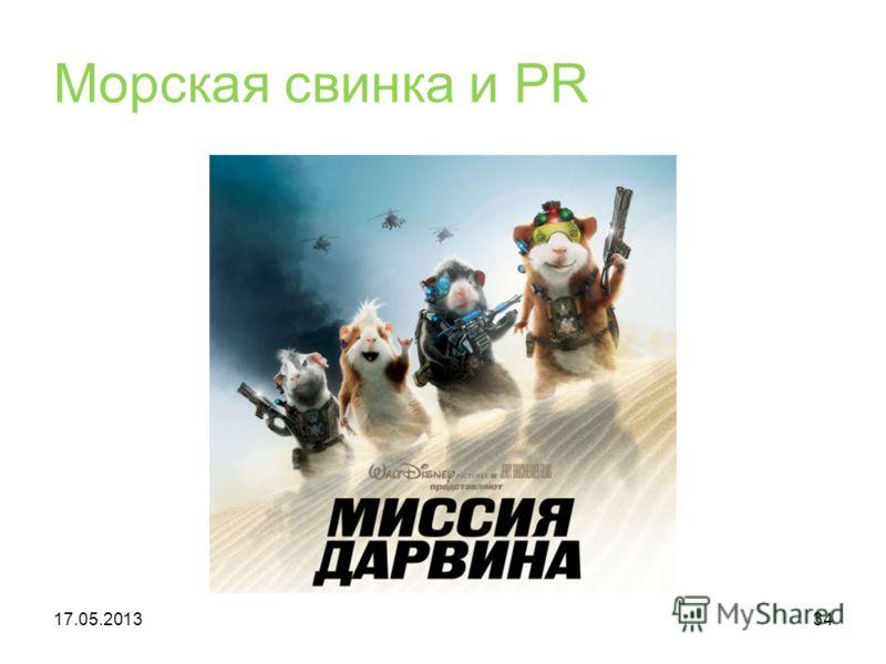 Морская свинка и PR 17.05.201334