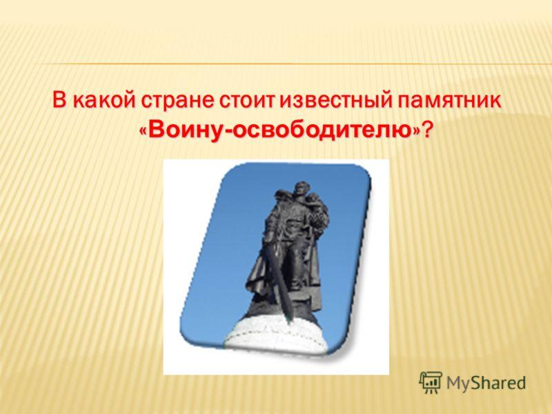 В какой стране стоит известный памятник « Воину-освободителю »?