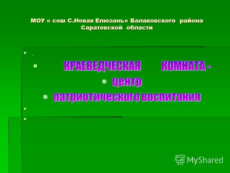 МОУ « сош С.Новая Елюзань» Балаковского района Саратовской области