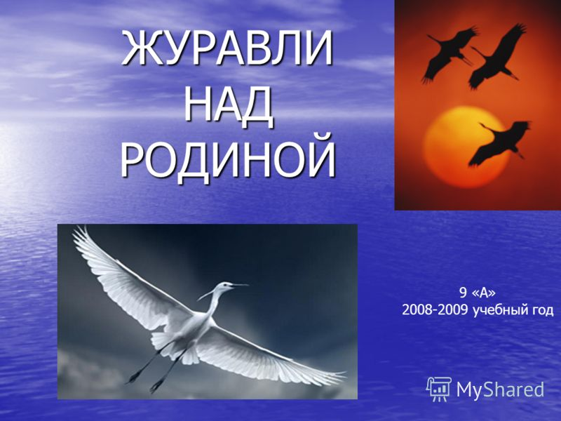 ЖУРАВЛИ НАД РОДИНОЙ 9 «А» 2008-2009 учебный год