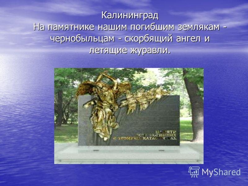 Калининград На памятнике нашим погибшим землякам - чернобыльцам - скорбящий ангел и летящие журавли.