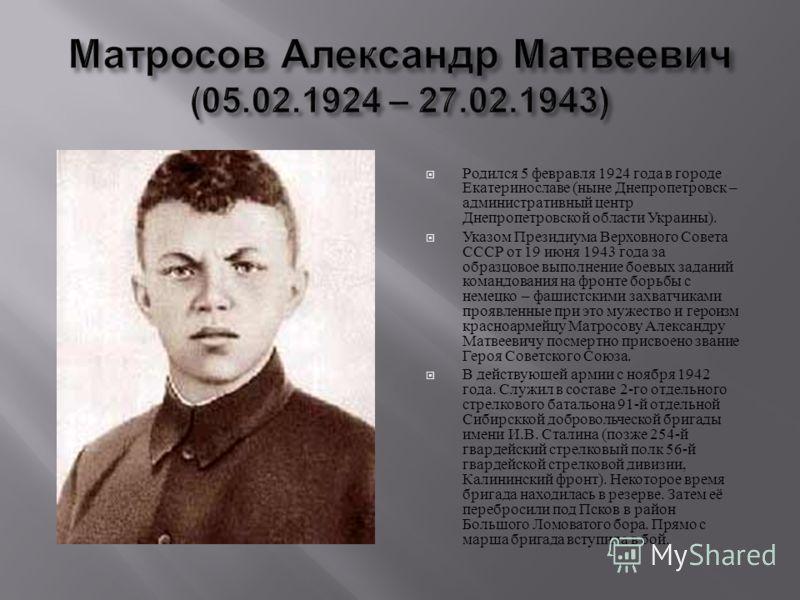 Родился 5 февравля 1924 года в городе Екатеринославе ( ныне Днепропетровск – административный центр Днепропетровской области Украины ). Указом Президиума Верховного Совета СССР от 19 июня 1943 года за образцовое выполнение боевых заданий командования