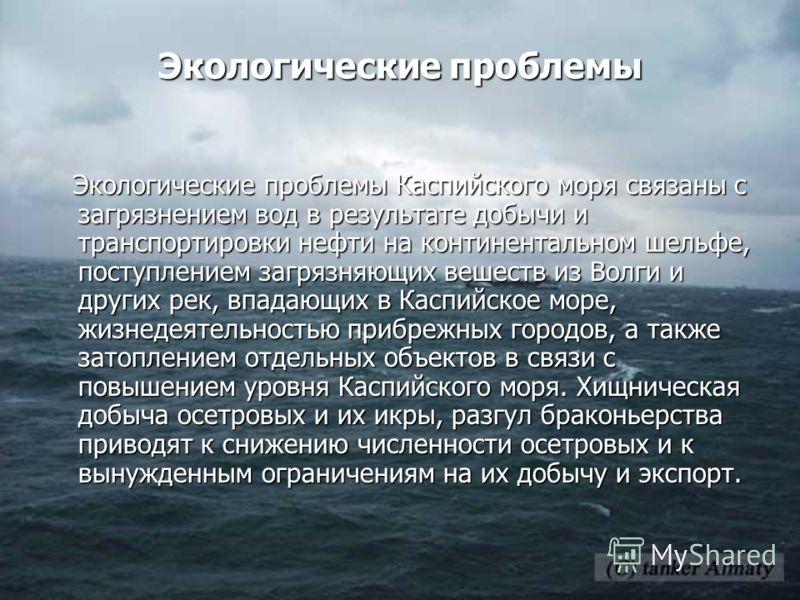 Экологические проблемы Экологические проблемы Каспийского моря связаны с загрязнением вод в результате добычи и транспортировки нефти на континентальном шельфе, поступлением загрязняющих вешеств из Волги и других рек, впадающих в Каспийское море, жиз