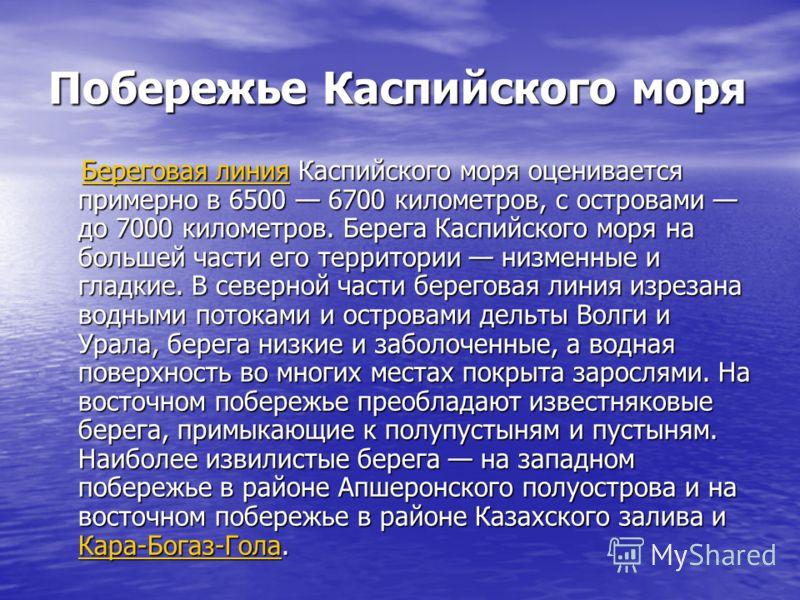 Побережье Каспийского моря Береговая линия Каспийского моря оценивается примерно в 6500 6700 километров, с островами до 7000 километров. Берега Каспийского моря на большей части его территории низменные и гладкие. В северной части береговая линия изр