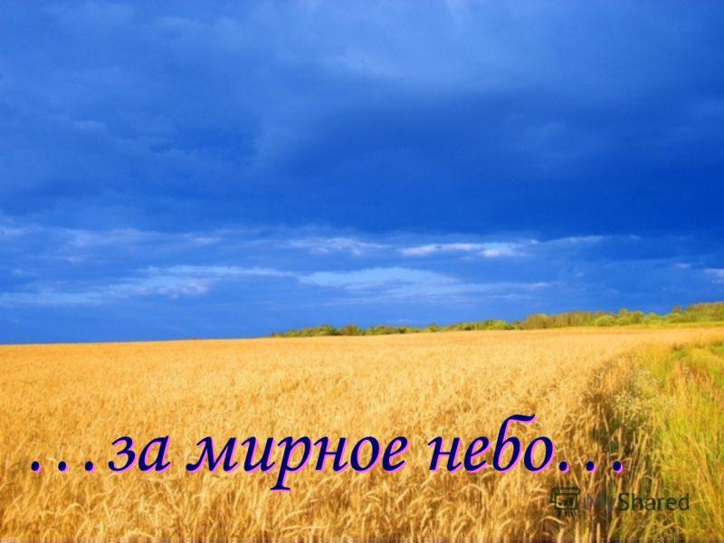 …за мирное небо…