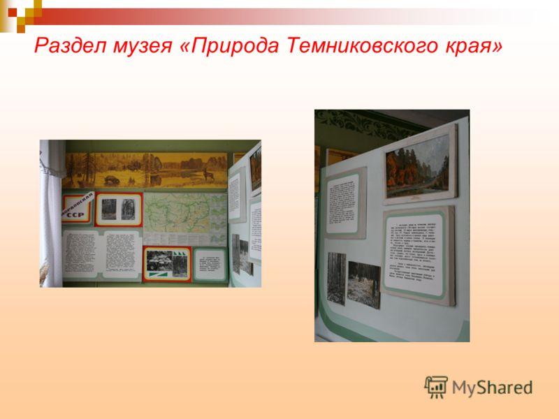 Раздел музея «Природа Темниковского края»