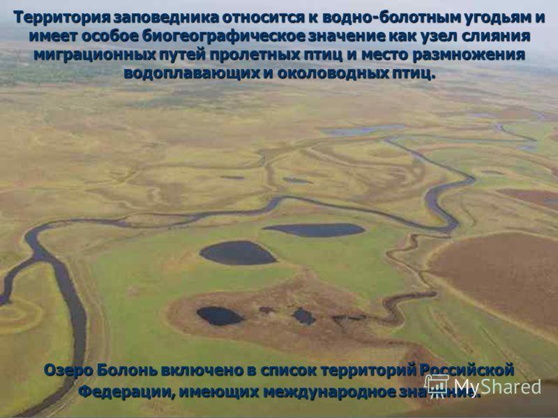 Территория заповедника относится к водно-болотным угодьям и имеет особое биогеографическое значение как узел слияния миграционных путей пролетных птиц и место размножения водоплавающих и околоводных птиц. Озеро Болонь включено в список территорий Рос