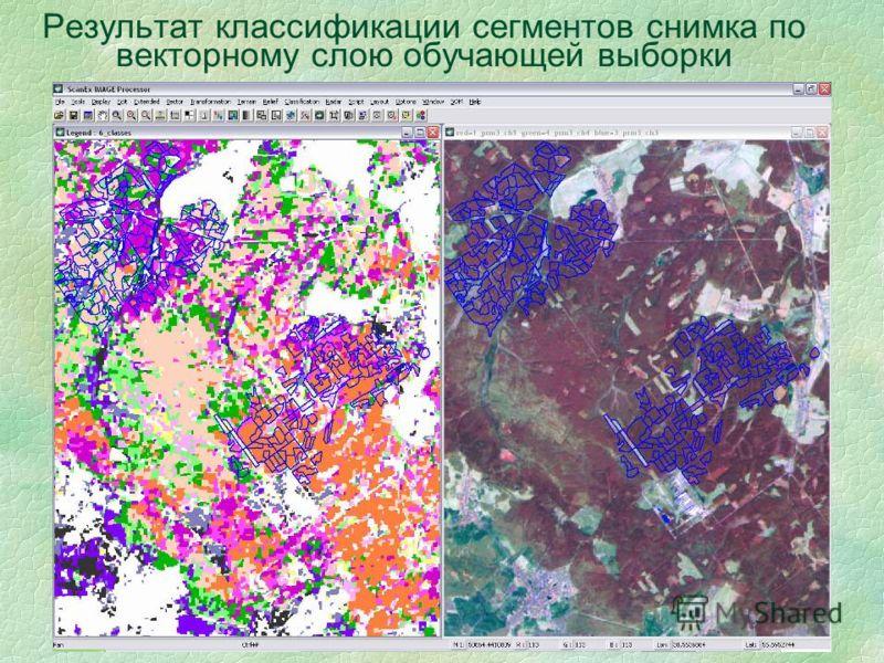 Результат классификации сегментов снимка по векторному слою обучающей выборки