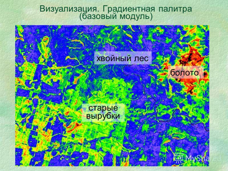 Визуализация. Градиентная палитра (базовый модуль) хвойный лес старые вырубки болото