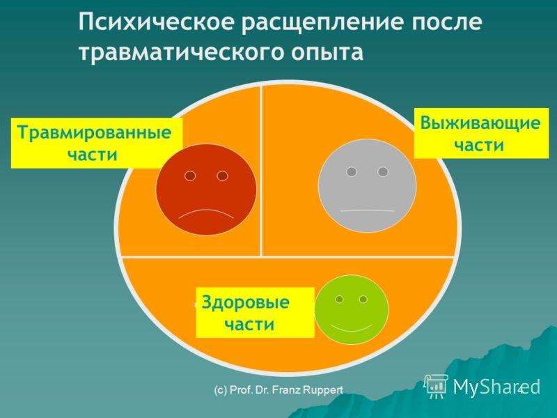 4 Психическое расщепление после травматического опыта Травмированные части Здоровые части Выживающие части