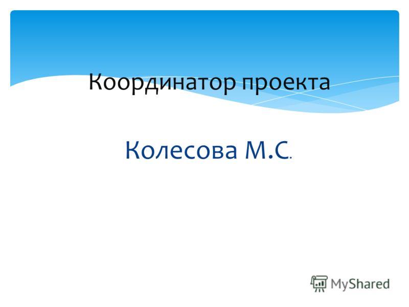 Колесова М.С. Координатор проекта
