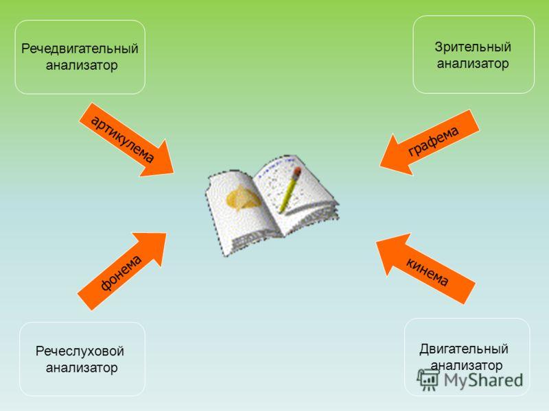 Речедвигательный анализатор Зрительный анализатор Речеслуховой анализатор Двигательный анализатор артикулема фонема графема кинема
