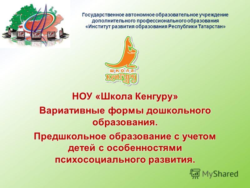 Государственное автономное образовательное учреждение дополнительного профессионального образования «Институт развития образования Республики Татарстан»