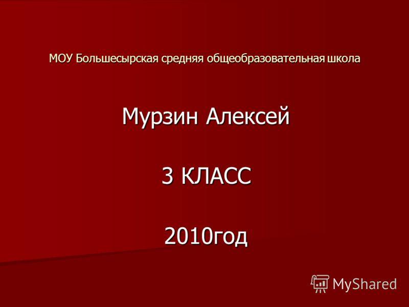 Мурзин Алексей 3 КЛАСС 2010год МОУ Большесырская средняя общеобразовательная школа