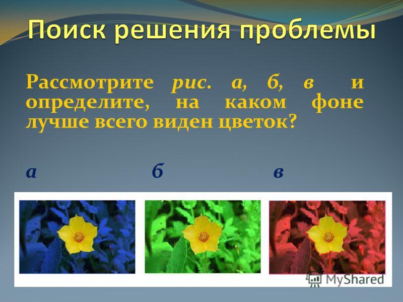 Рассмотрите рис. а, б, в и определите, на каком фоне лучше всего виден цветок? а б в