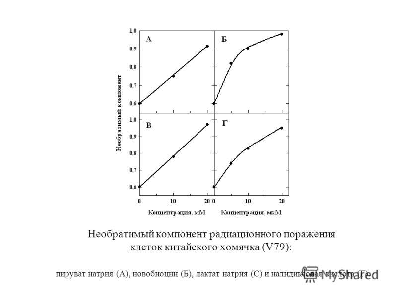 Необратимый компонент радиационного поражения клеток китайского хомячка (V79): пируват натрия (А), новобиоцин (Б), лактат натрия (С) и налидиксовая кислота (Г).