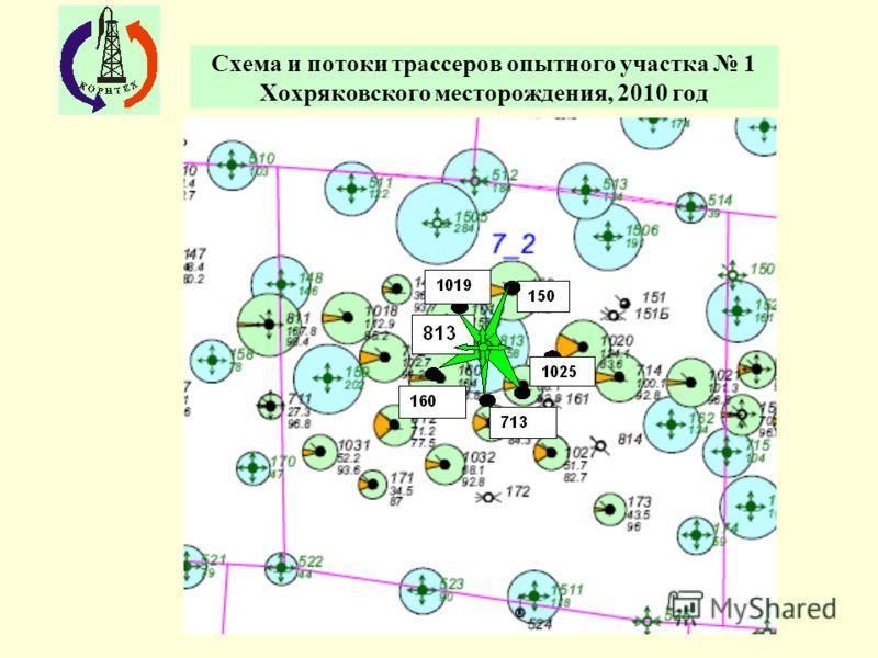 Схема и потоки трассеров опытного участка 1 Хохряковского месторождения, 2010 год