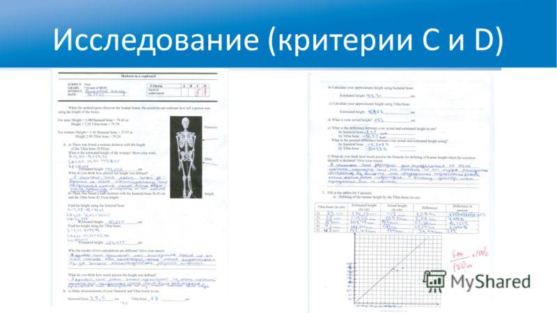 Исследование (критерии C и D)