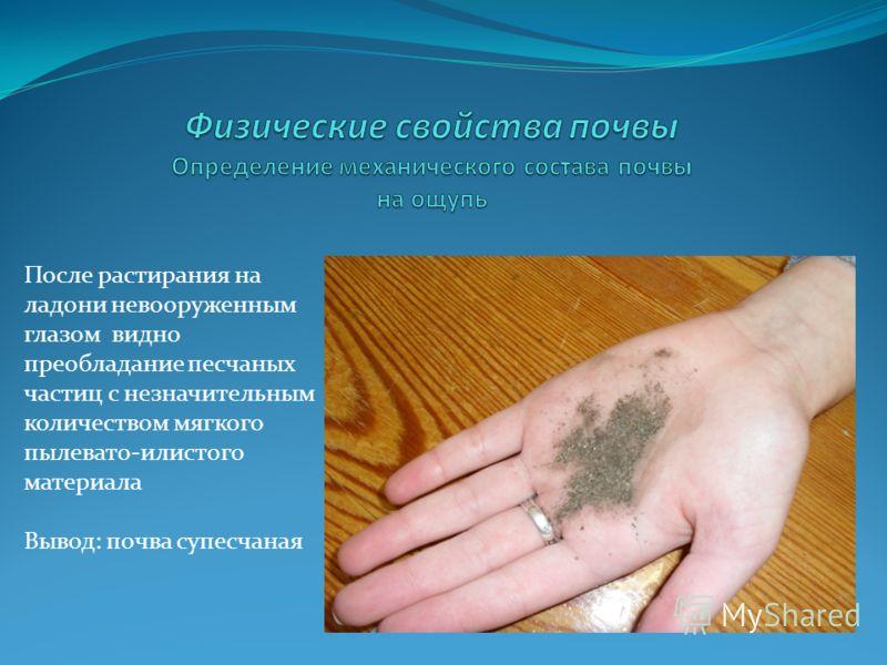 После растирания на ладони невооруженным глазом видно преобладание песчаных частиц с незначительным количеством мягкого пылевато-илистого материала Вывод: почва супесчаная