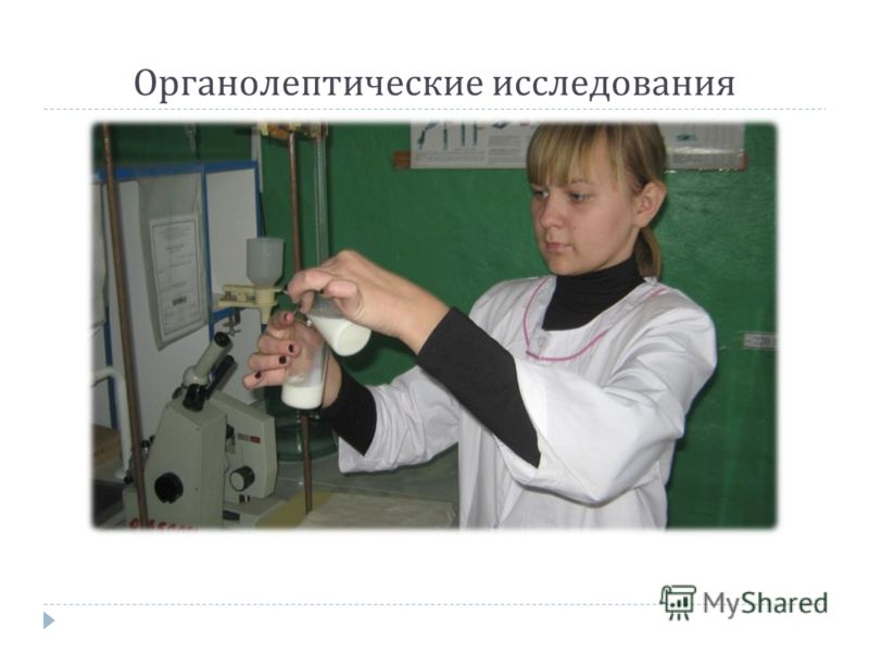 Органолептические исследования
