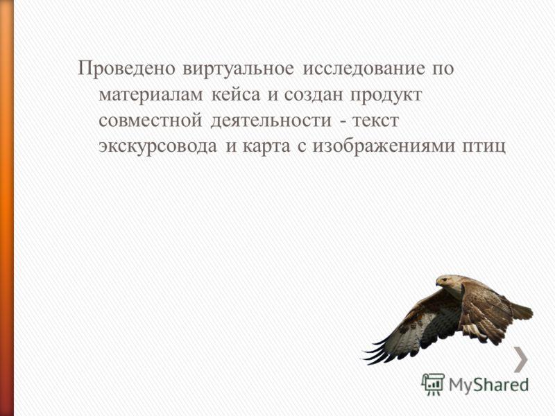 Проведено виртуальное исследование по материалам кейса и создан продукт совместной деятельности - текст экскурсовода и карта с изображениями птиц Курганник